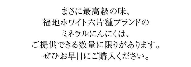 上質なにんにくブランド【青森県産福地ホワイト六片ミネラルにんにく】